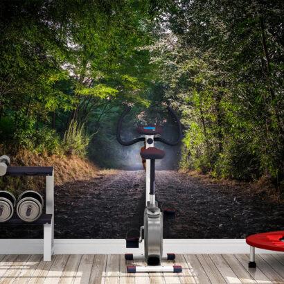 Fotomural Vinilo Running Sendero en el Bosque