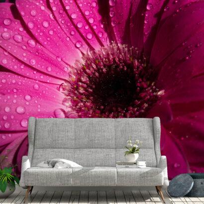 Fotomural Vinilo Floral Frescor Rosa