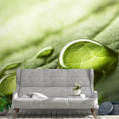 Fotomural Hojas Verdes Frescor