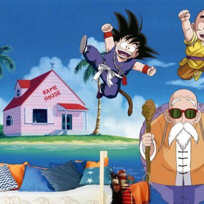 Fotomural Vinilo de Pared Dragon Ball Z Goku y Piccolo
