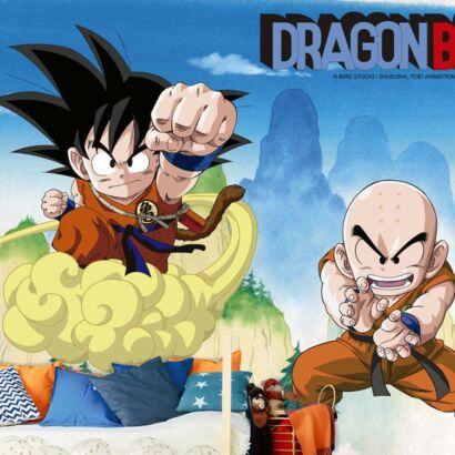 Papel Pintado de Pared Dragon Ball Classic Goku y Krillin montaje