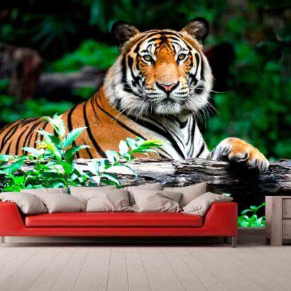 Fotomural Vinilo Tigre