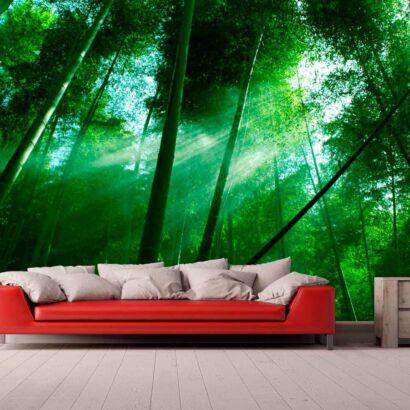 Papel Pintado Bosque Bambú