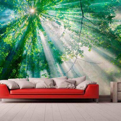 Papel Pintado Bosque Iluminado