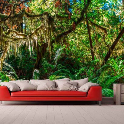 Papel Pintado Vegetación Tropical