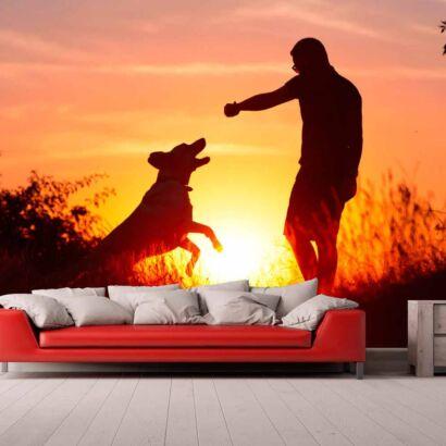 Papel Pintado Perro Jugando