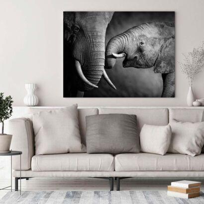 Cuadro Elefante y Cría