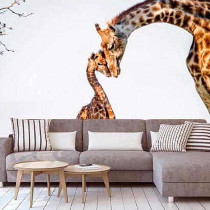 Papel Pintado Girafa y Cría