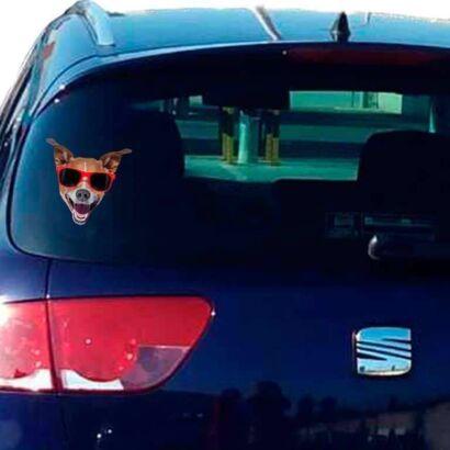 Vinilo Decorativo Perro gafas rojas