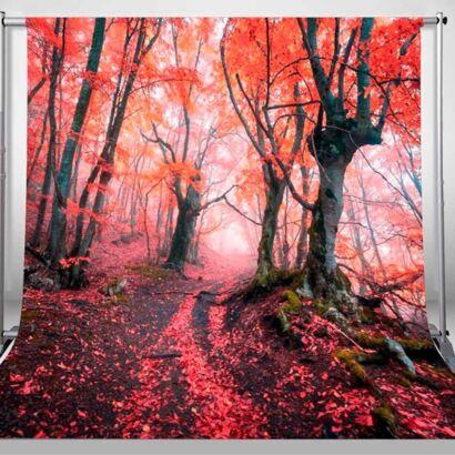 Fondo Fotográfico Natural Bosque Rojo