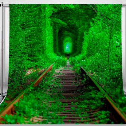 Fondo Fotográfico Vías de Ferrocarril Abandonado