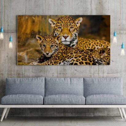 Fotocuadro Animales Familia Leopardos