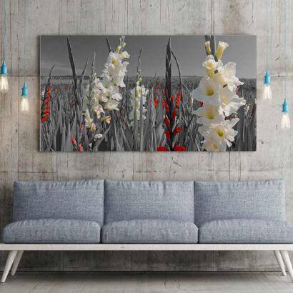 Fotocuadro Floral Blancas y Rojas