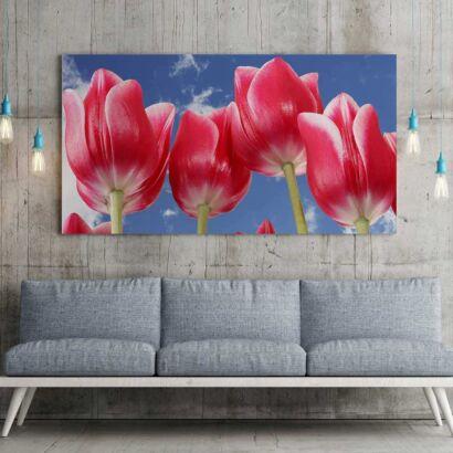 Fotocuadro Floral Tulipanes Rojos Florecidos