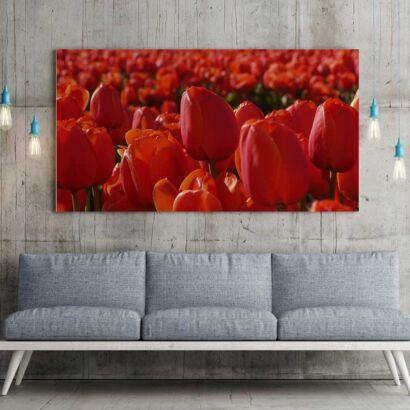 Fotocuadro Floral Tulipanes Rojos
