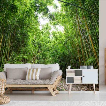 Fotomural Camino Bosque de Bambú