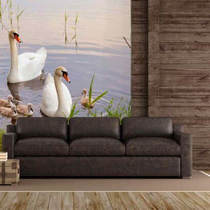 Fotomural Familia de Cisnes en el Lago