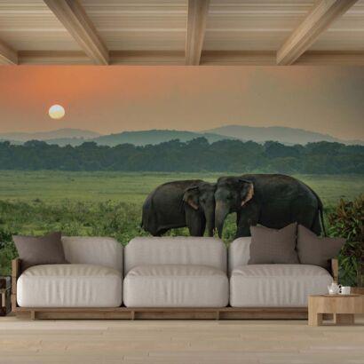 Fotomural Vinilo Elefantes en el Atardecer