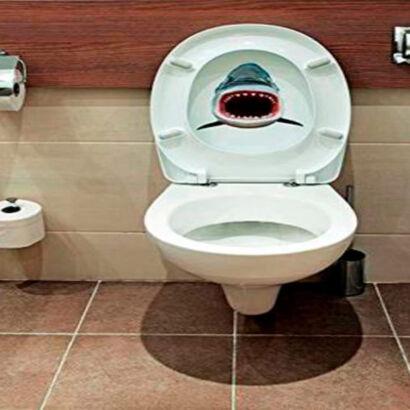 vinilo-decorativo-tiburon
