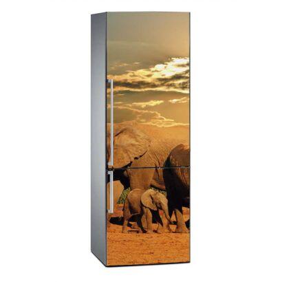 Vinilo Frigorífico Parque del Elefante Sudáfrica