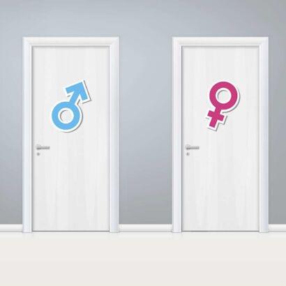 Vinilo Puerta WC Signos Masculino y Femenino